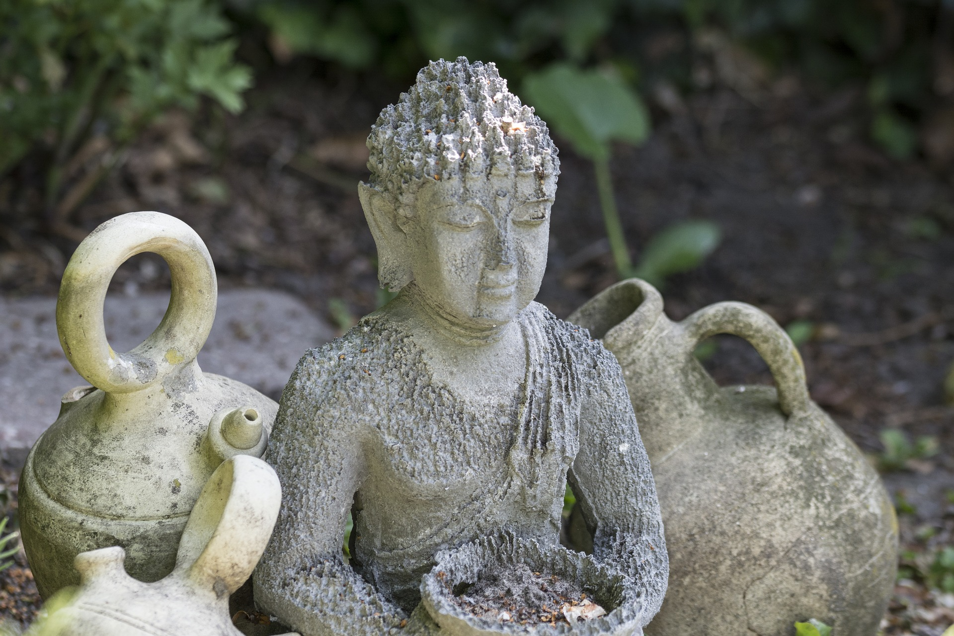 fred-visdom-personlig-mognad-protea
