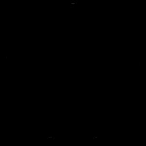 Protea Enneagrammet